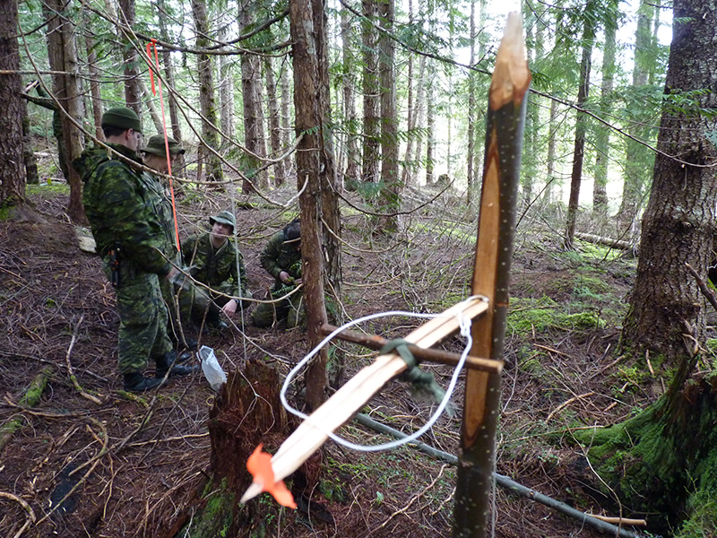 An Ojibway Bird Trap stands waiting for unwary prey while soldiers practice building and placing a variety of animal traps as part of their survival skills training during exercise Coastal Sasquatch. 