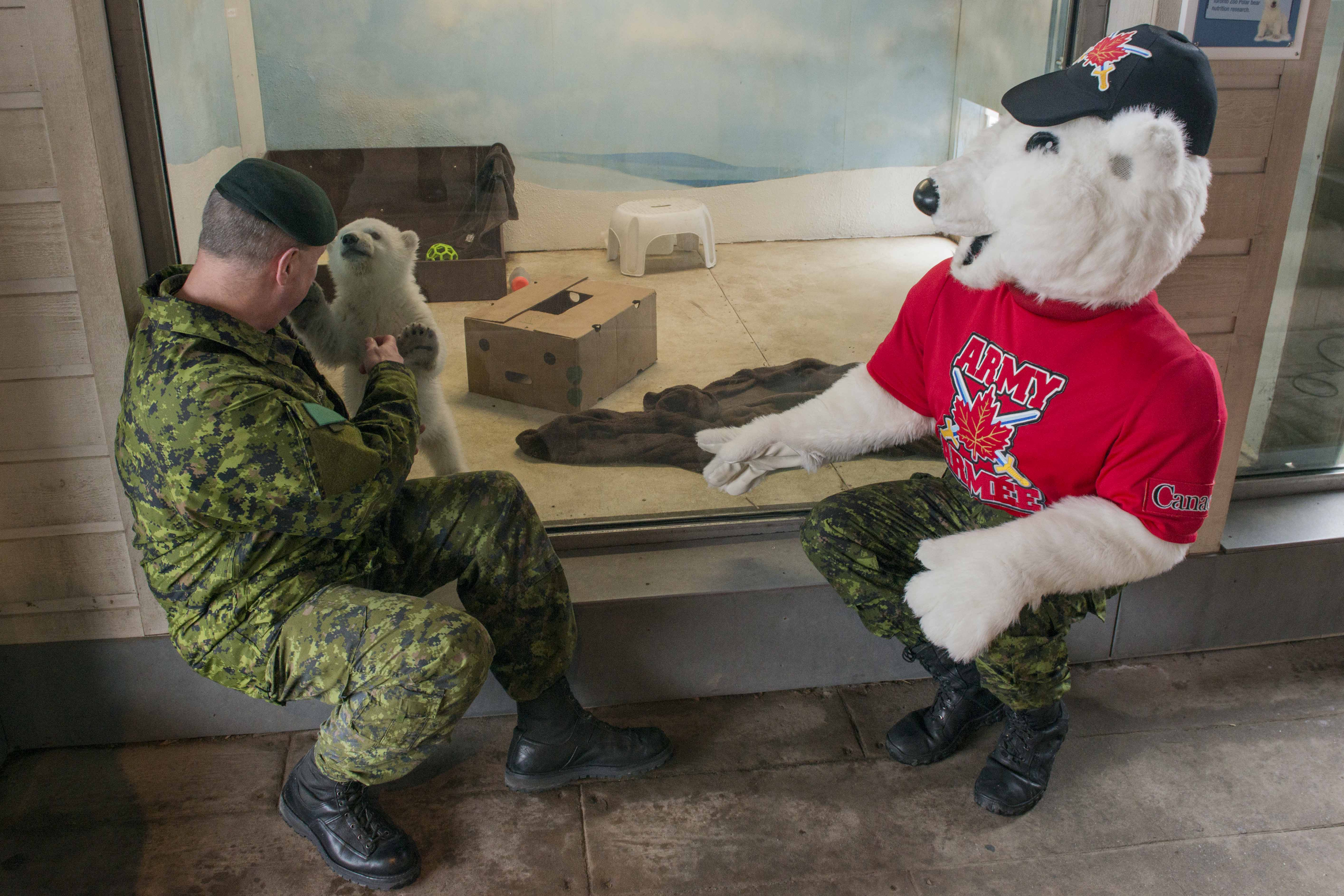 Brigadier-General David Patterson, Deputy Commander of the 4th Canadian Division, and Juno, the Canadian Army mascot, welcome the Canadian Army's adopted polar bear cub, Private Juno, at Toronto Zoo on February 25, 2016. Photo by: MCpl Precious Carandang, 4th Canadian Division Public Affairs 2016 DND-MDN Canada.