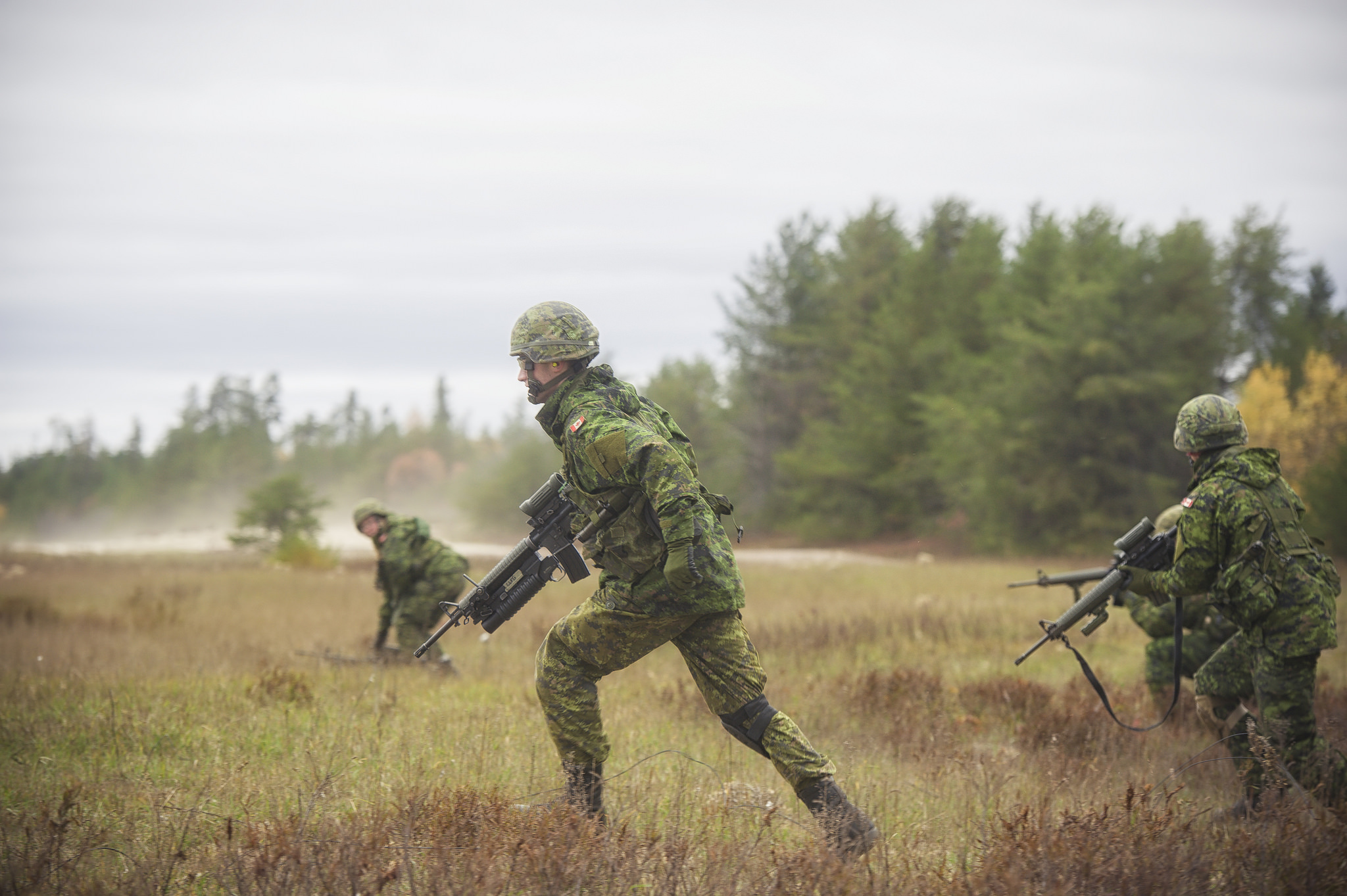 Infantry soldiers from The Cameron Highlanders of Ottawa (Duke of Edinburgh's Own) and Governor Generals Foot Guards conduct live fire and movement training in Petawawa on 21-23 October 2016.